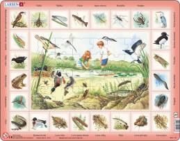 Výukové puzzle Život u rybníka