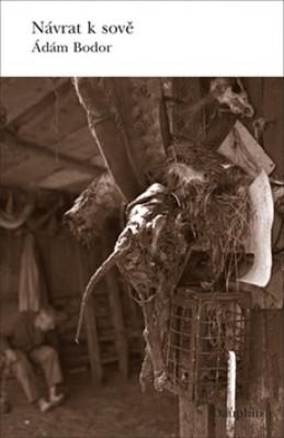 Návrat k sově - Ádám Bodor