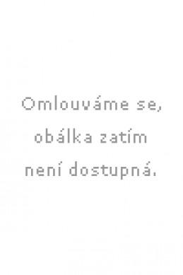 Pátá esence - Jiří Olšovský