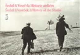 Šechtl & Voseček: Historie ateliéru