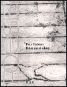 Dům mezi okny - Petr Fabian