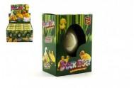 Kačenka líhnoucí a rostoucí z vajíčka 6cm v krabičce 12 ks v boxu