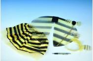 Křídla včelka 40cm se sukýnkou, hůlkou a čelenkou v sáčku