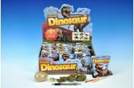 Dinosaurus vejce zkamenělina v sáčku asst 24ks v boxu