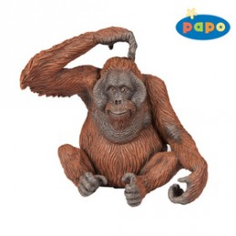 Orangutan - Chabon Michael