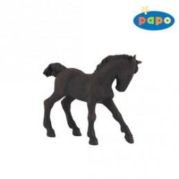 Fríský kůň mládě - Chabon Michael