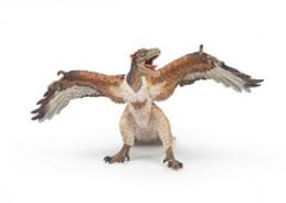 Archaeopteryx - Chabon Michael