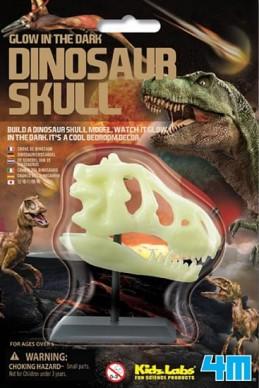 Dinosauří lebka - Hawkins David R.