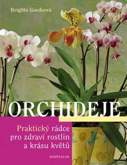 Orchideje - Praktický rádce pro zdraví rostlin a krásu květů - Goedeová Brigitte