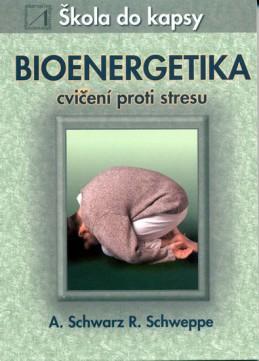 Bioenergetika - cvičení proti stresu - Škola do kapsy - kolektiv