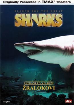 Pátrání po velkém žralokovi - DVD - neuveden
