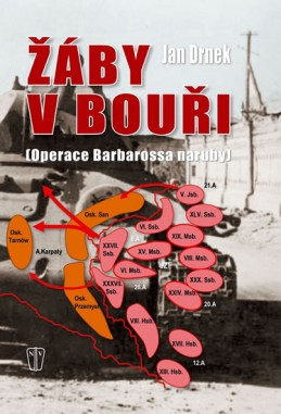 Žáby v bouři - Operace Barbarossa naruby - Drnek Jan