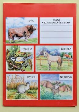 Psaní vyjmenovaných slov - Určeno pro 3., 4. a 5. třídu ZŠ a pro žáky s SPU - Flösslerová Dobruška, Mgr.