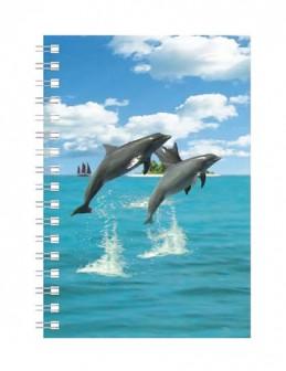 Deníček - Úžaska - Delfíni - neuveden