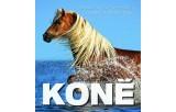 Koně - Temperament a elegance ve fotografiích