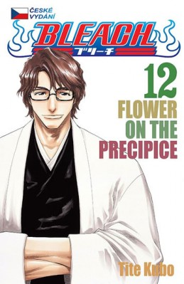 Bleach 12: Flower on the Precipice - Kubo Tite
