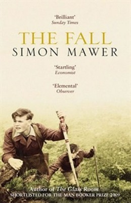 The Fall - Mawer Simon